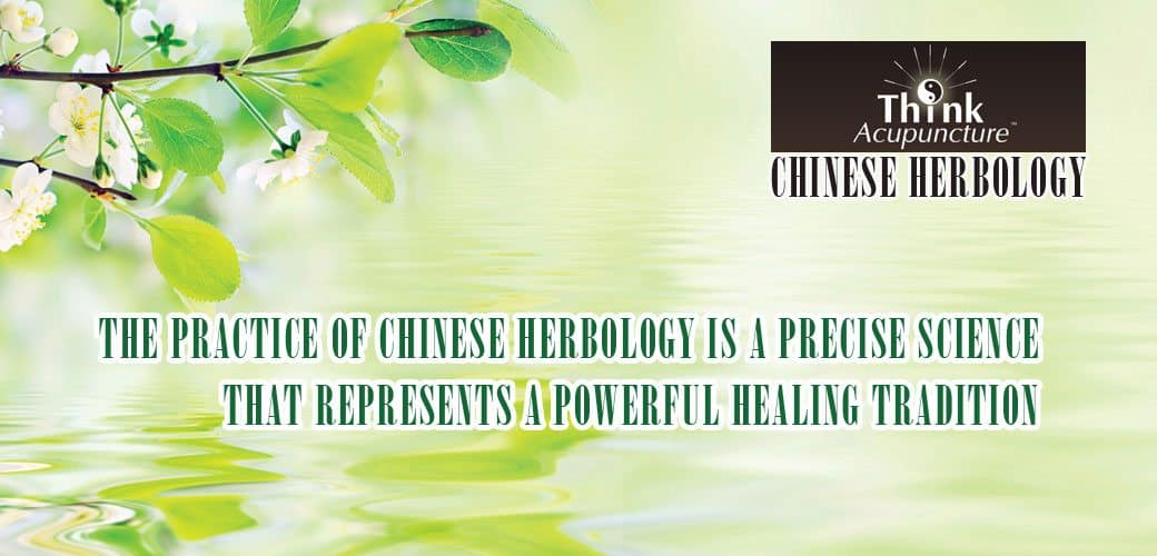 think acupuncture chinese herbology
